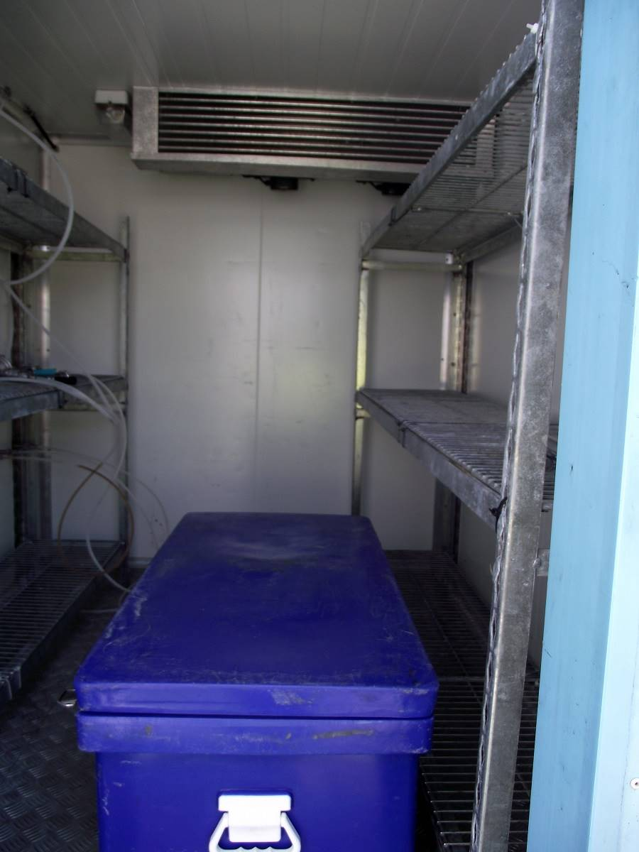 Large Coldroom Internal With Esky
